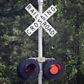 Railroad Crossing Warning Signal by Cynthia Guinn