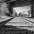 Railroad Tracks by Louis Dallara