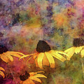 Rain And Yellow 4622 Idp_2 by Steven Ward