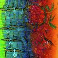 Rainbow by Albena Vatcheva