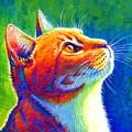 Rainbow Cat Portrait by Rebecca Wang