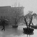 Rainy Day In L.a. by Jenny Revitz Soper