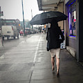 Rainy Day by Juan Contreras