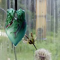 Rainy Morning At The Bird Feeder by Rosanne Licciardi