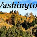Randle Washington In Fall 02 by G Matthew Laughton