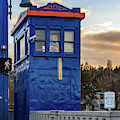 Rapunzel In Seattle's Fremont District by G Matthew Laughton