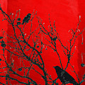 Raven - Black Over Red by Serge Averbukh