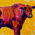 Red Angus Bull Painting Cattle Breed by Mike Jory