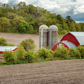 Red Barns In Wisconsin by Susan Rissi Tregoning