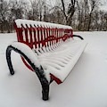 Red Bench G0873413 by Michael Thomas
