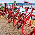 Red Bikes At Lake Taupo, New Zealand by Lyl Dil Creations