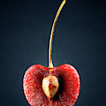 Red Cherry Still Life by Johan Swanepoel