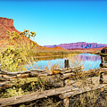 Red Cliffs Canyon by David Morefield