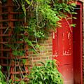 Red Door by Zal Latzkovich