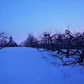 Red Farmhouse Winter  Sunset by Joann Vitali