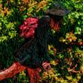 Red Leg Walk by Blake Richards