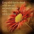 Red Mum Art Quote by Teresa Wilson