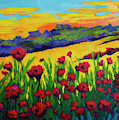 Red Poppies In Spring by Patricia Awapara