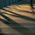 Red Shoe by Joel Friedman