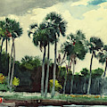 Red Shrt, Homosassa, Florida by Winslow Homer