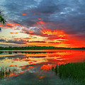 Red Sky And Palm Sunset by Tom Claud