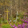Redbud And Crosses  by Thomas R Fletcher