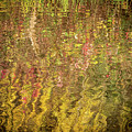 Reflected Abstract by Jean Noren