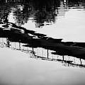 Reflected Bridge by Desmond Raymond