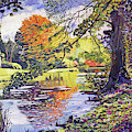 Reflecting The Autumn Leaves by David Lloyd Glover