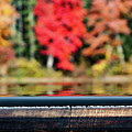 Reflection At Chocrua Dam Park by Jeff Folger