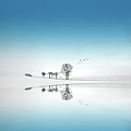 Reflection Of Trees by Philippe Sainte-laudy Photography