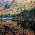 Reflection On Beaver Pond Of New Hampshire Fall Colors by Jeff Folger