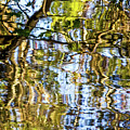 Reflections In Blue by Kate Brown