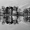 Reflections On Buttermere by Paul Whiting