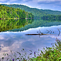 Reflections On Sis Lake by David Patterson