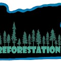 Reforestation by Nick Gustafson