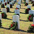 Remembrance Wreaths by Cynthia Guinn