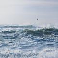 Reynisfjara Seagull Over Crashing Waves by Nathan Bush