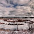 Rhinelander Flowage Backwaters In White by Dale Kauzlaric