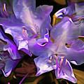 Rhododendron Glory 17 by Lynda Lehmann