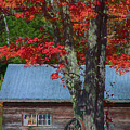 Rickety Wagon Wheel Under Red Fall Color by Jeff Folger