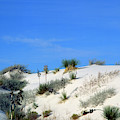 Rippled Sand Dunes In White Sands National Monument, New Mexico - Newm500 00106 by Kevin Russell