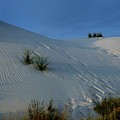 Rippled Sand Dunes In White Sands National Monument, New Mexico - Newm500 00118 by Kevin Russell