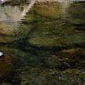 Rippling Water 6487 Idp_2 by Steven Ward