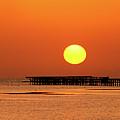 Rising Sun In Nabq Bay by Sun Travels