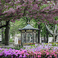 Rittenhouse In Spring by Stacey Granger
