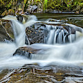 River Braan, Perthshire by David Ross