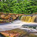 River Swale, Yorkshire by David Ross