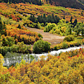 Riverside Fall Colors Along Highway 133 by Ray Mathis