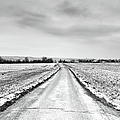 Road Through Snow Landscape by Xamah Image